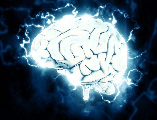 #9 Wie dauerhafter Stress unser Gehirn beeinflusst